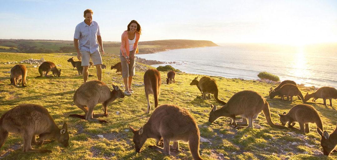 Les formalités pour partir Au Pair en Australie ✈️