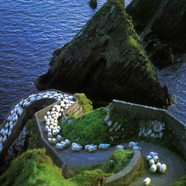 séjour au pair en Irlande