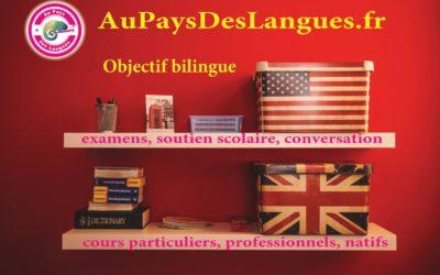 Cours d'anglais en ligne – les avantages